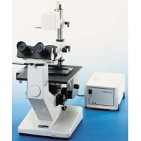 Invert Microscope (Wilovert)